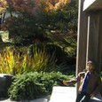 08.11/24紅葉の庭園を散歩