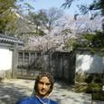 09.4/7予定変更の末のお花見